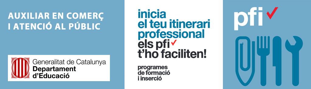 Programa PFI